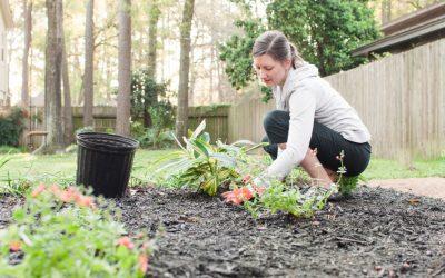 Quels sont les éléments intéressants à placer dans un jardin ?